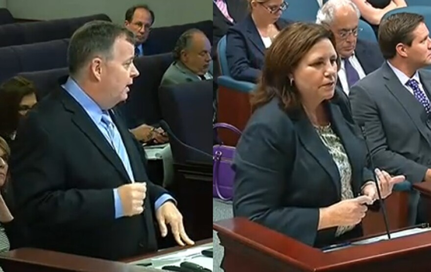 Florida Department of Children and Families Secretary Mike Carroll (left) and DCF Assistant Secretary Janice Thompson (right) speaking to lawmakers this week.