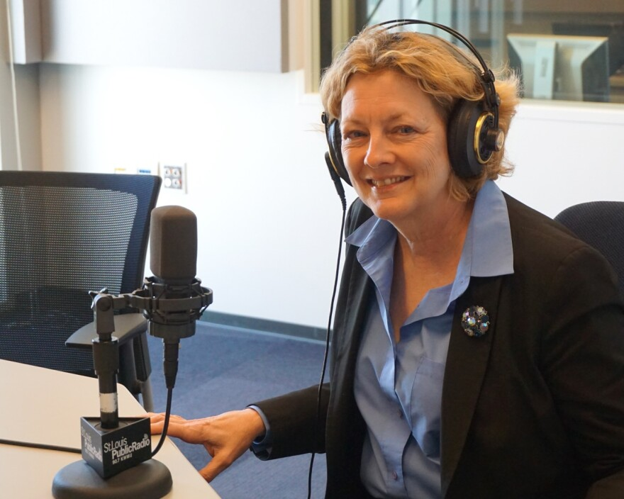 Sue Pollmann joined Tuesday's program.