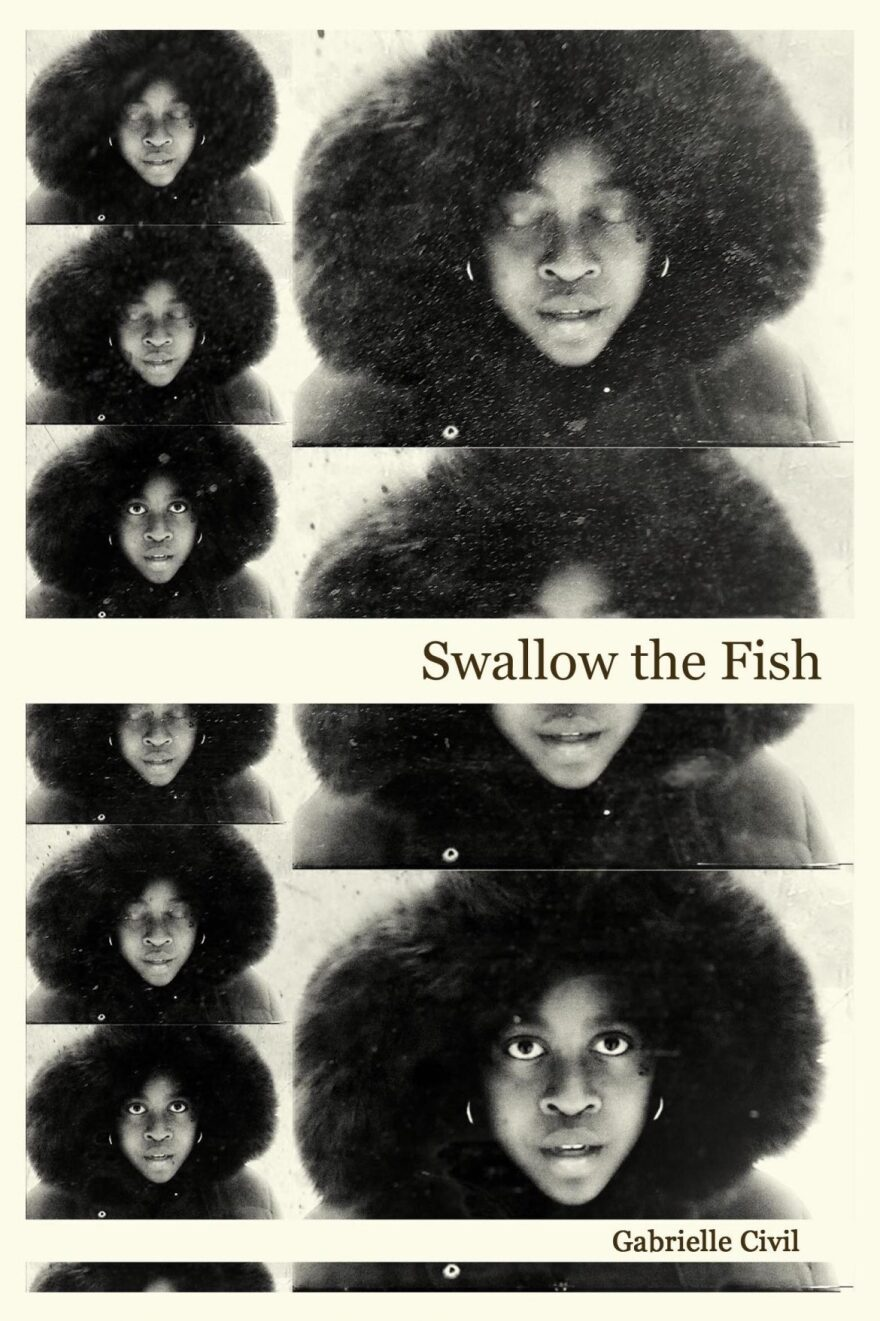 swallow-the-fish-cover-copy-1170x1756-1.jpg