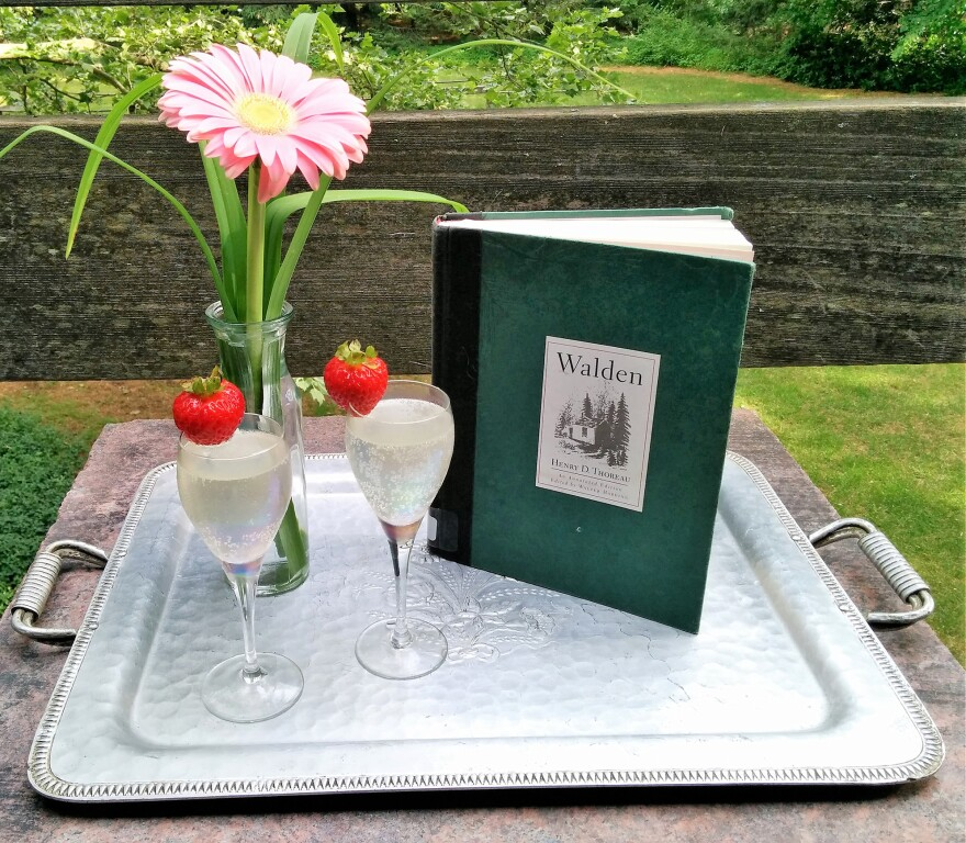 The Rhubarb Shrub a is Colonial-day drink made from a syrup of rhubarb, vinegar and sugar.