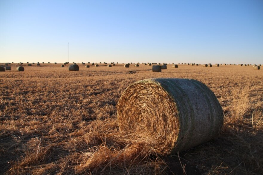 The Bahr family connects to the internet through the cell tower seen here beyond a field of hay bales in Barton County.