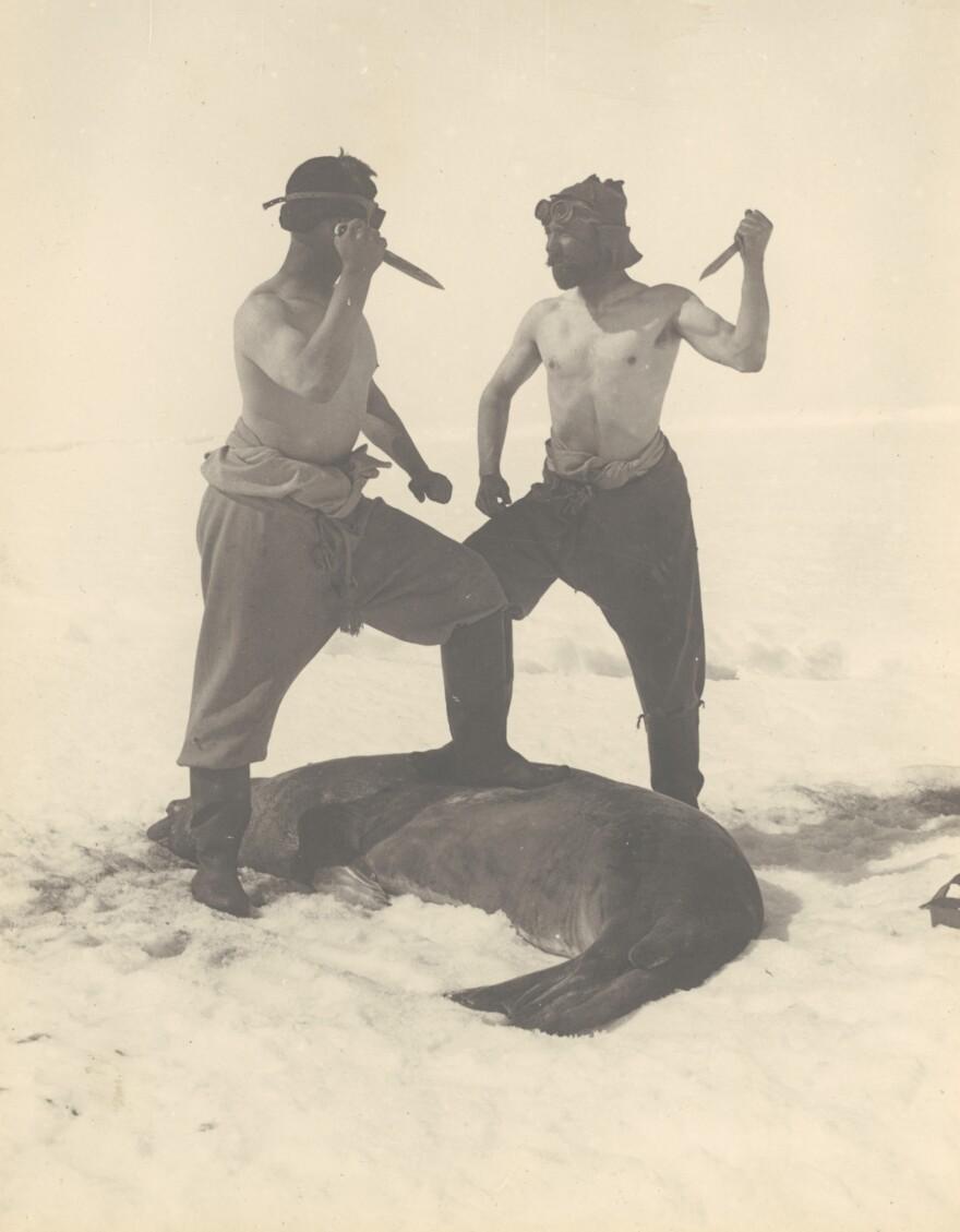 Frank Wild — Ernest Shackleton's second-in-command on the <em>Endurance</em> voyage — and M.H. Moyes slay a Weddell seal.