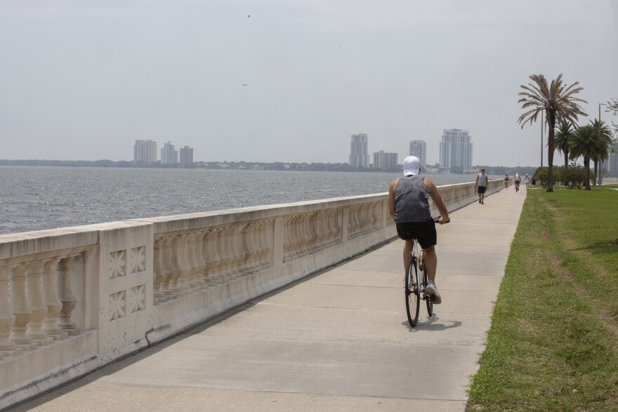 bicyclist on sidewalk along Tampa Bay