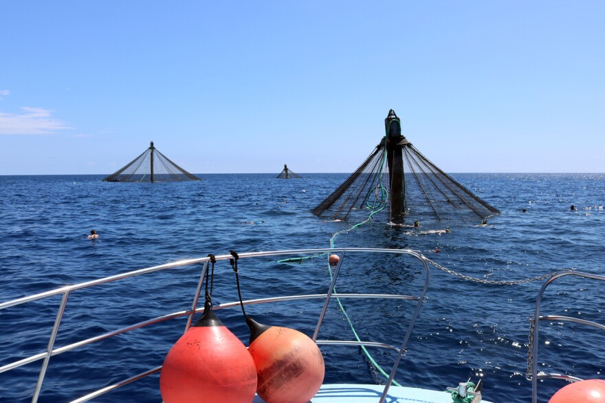 View from a boat overlooking nets in the open water.