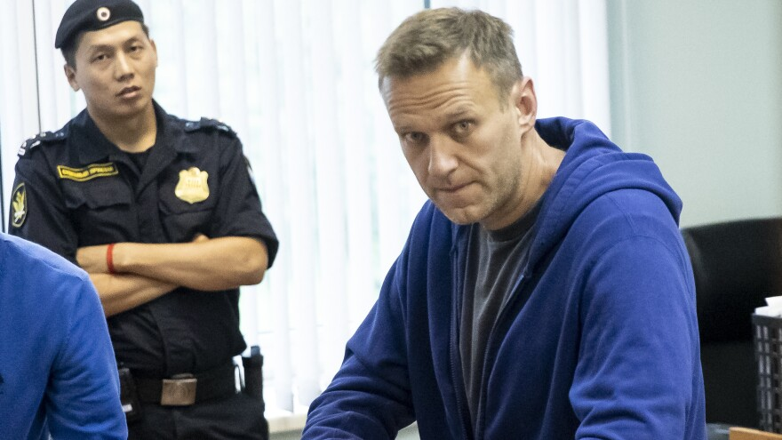 Alexei Navalny, one of Russia's most prominent opposition figures, appears in a Moscow courtroom on July 24. A longtime critic of President Vladimir Putin, he was recently arrested after calling for a mass protest against the exclusion of opposition candidates from Moscow's city council election.