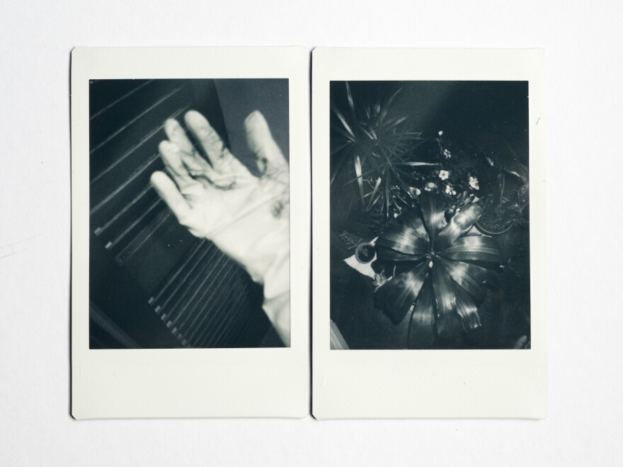(Left) During the coronavirus pandemic, cleaning has become more intense and important. Gloves used for cleaning photographer Celeste Alonso's house in Buenos Aires, Argentina. (Right) Plants on Alonso's balcony.