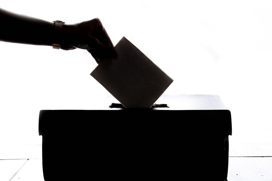 A silhouette of a voter casting a ballot.
