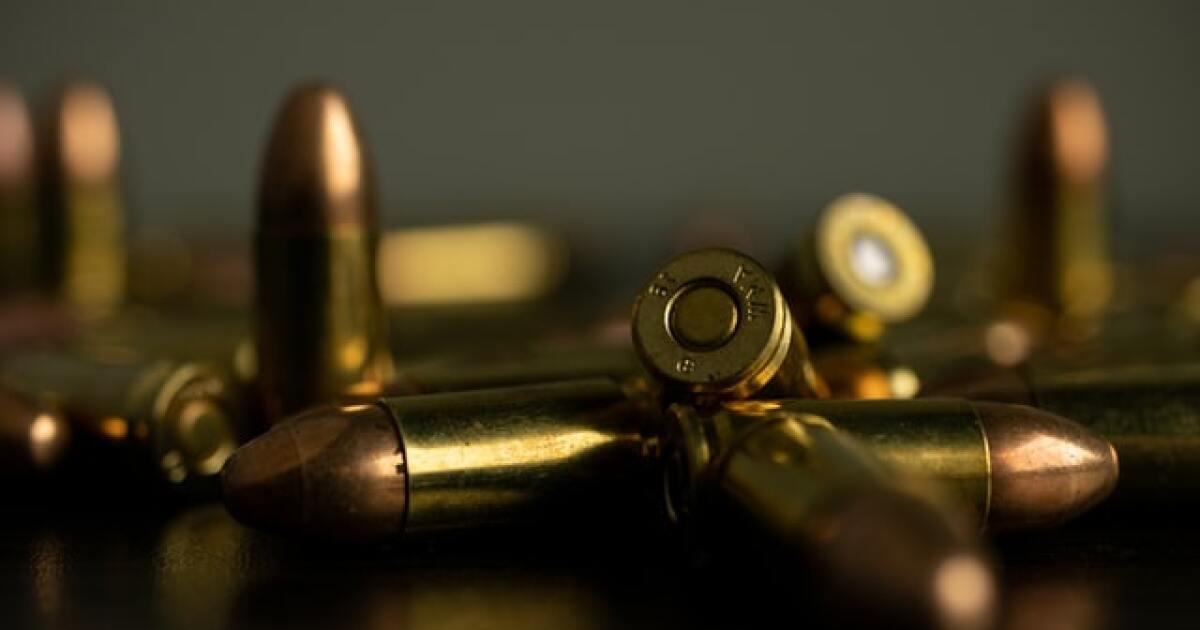 Ammunition Shelves Bare Across U.S. As Gun Sales Continue To Soar