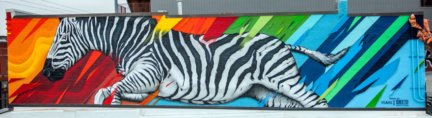 100518_SikeStyle_Zebra2.PNG
