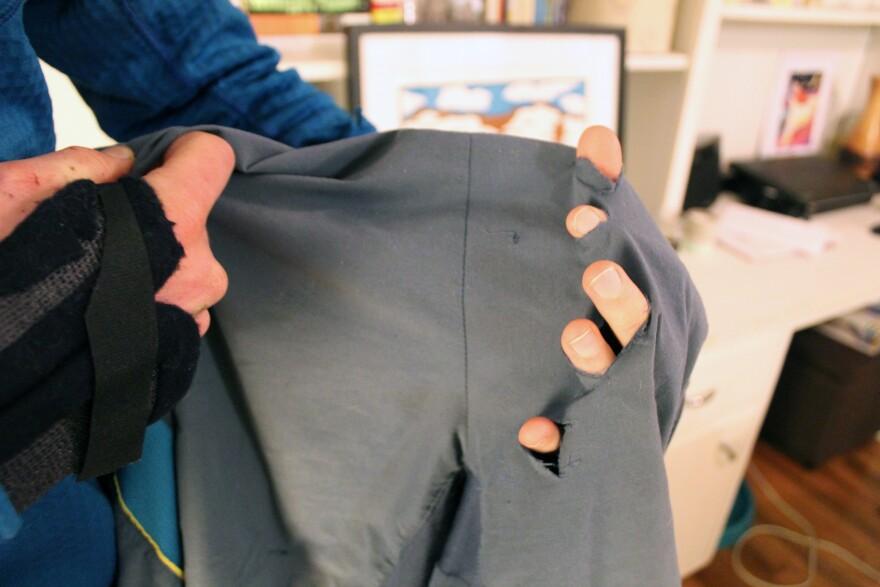 Kauffman's shorts