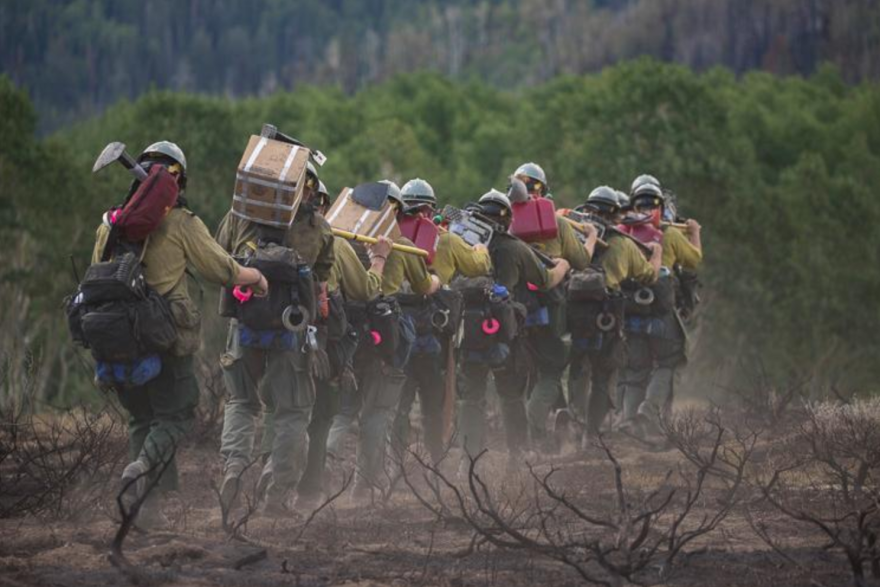 Photo of wildland firefighters.