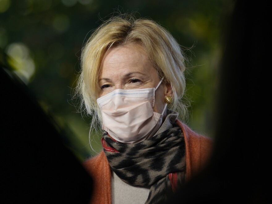 "White House Coronavirus Response Coordinator Dr. Deborah Birx on Tuesday described her experience leading the task force as ""overwhelming,"" suggesting her family have unfairly been targeted in the attacks against her."