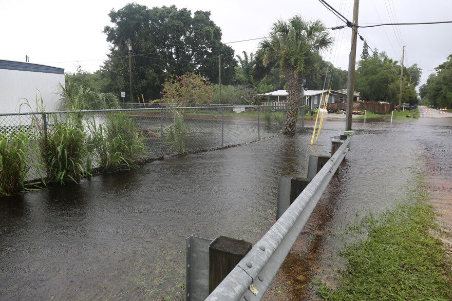 Flooded road and ditch in Pasco County.