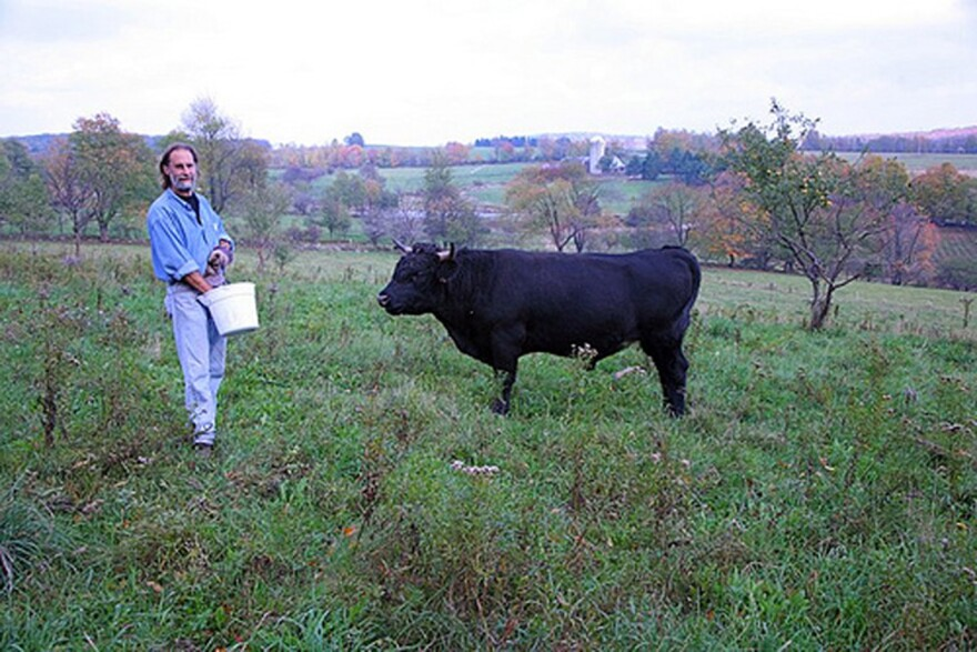 Farmer Ken Jaffe on the grounds of his Slope Farms in Meredith, NY. Before his life as a butcher in the Western Catskills, Jaffe spent 25 years as a family doctor in Park Slope, Brooklyn. (Ully Kjarval / Chefs for the Marcellus)