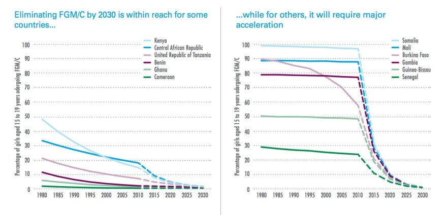 This chart tracks the changing rates of female genital mutilation in a sampling of countries — and projects the rate needed to end FGM by 2030.
