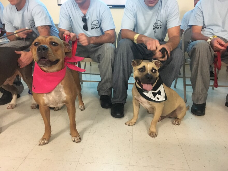 Darty (left) and Waylon (right) graduated from the TAILS training program at the Montgomery Correctional Center, Wednesday.
