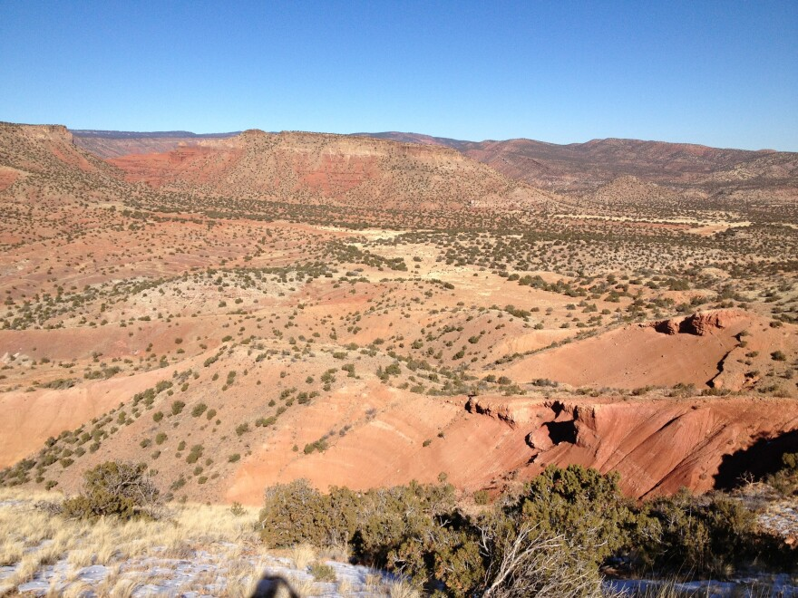 This is what New Mexico's northern desert <em>normally </em>looks like. Copper Canyon was a sea of burnt reds and browns in December 2013.