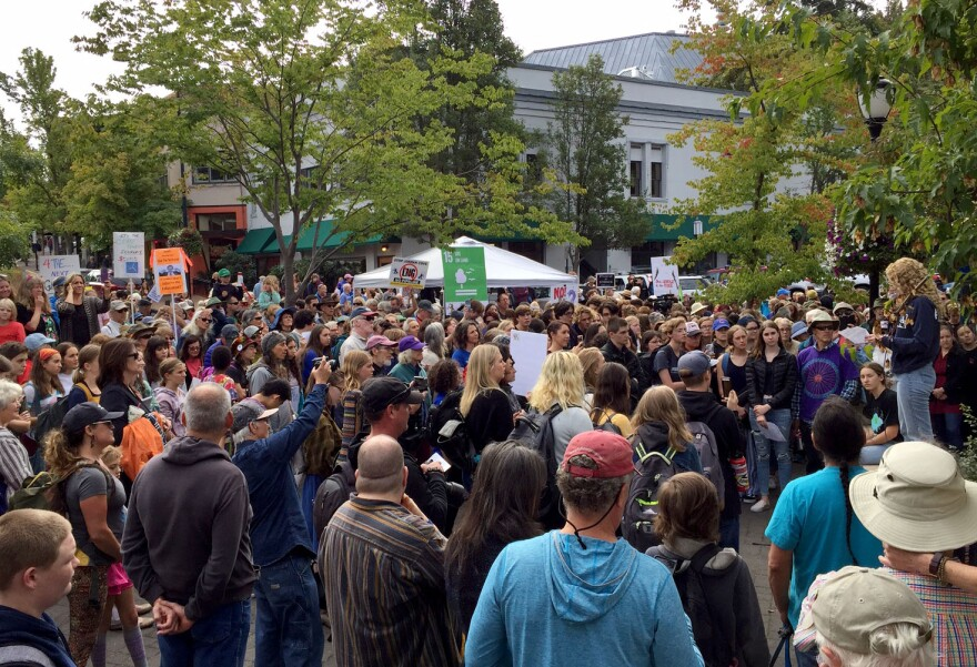 Image of a crowd of protesters in downtown Ashland.