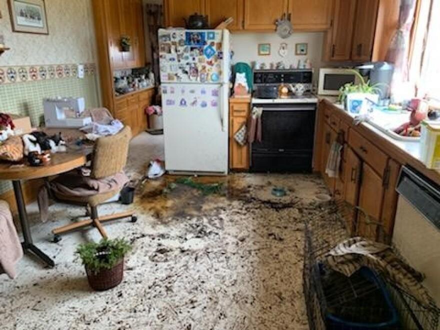 082720_JudyHertle_Kitchen.jpg