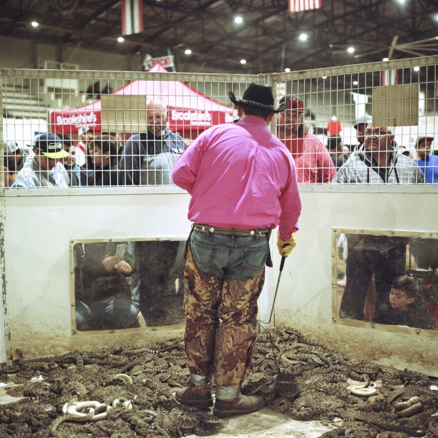 Travis Gardner moves snakes around inside a pit as he talks to the crowds at the Rattlesnake Roundup in Sweetwater, Texas. The event was held March 13–15. Families have been participating in the community event for generations.