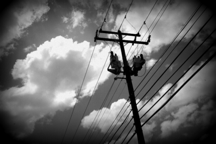 Electricity_Lines_by_Nasha_Lee_001-001.JPG