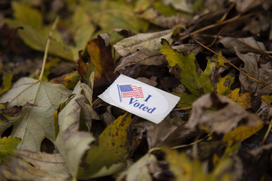 Image of voting sticker laying in fall leaves.