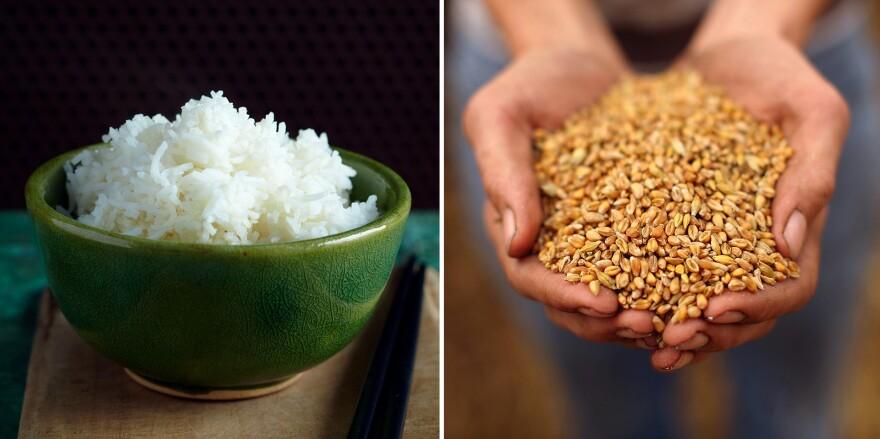 Rice versus wheat