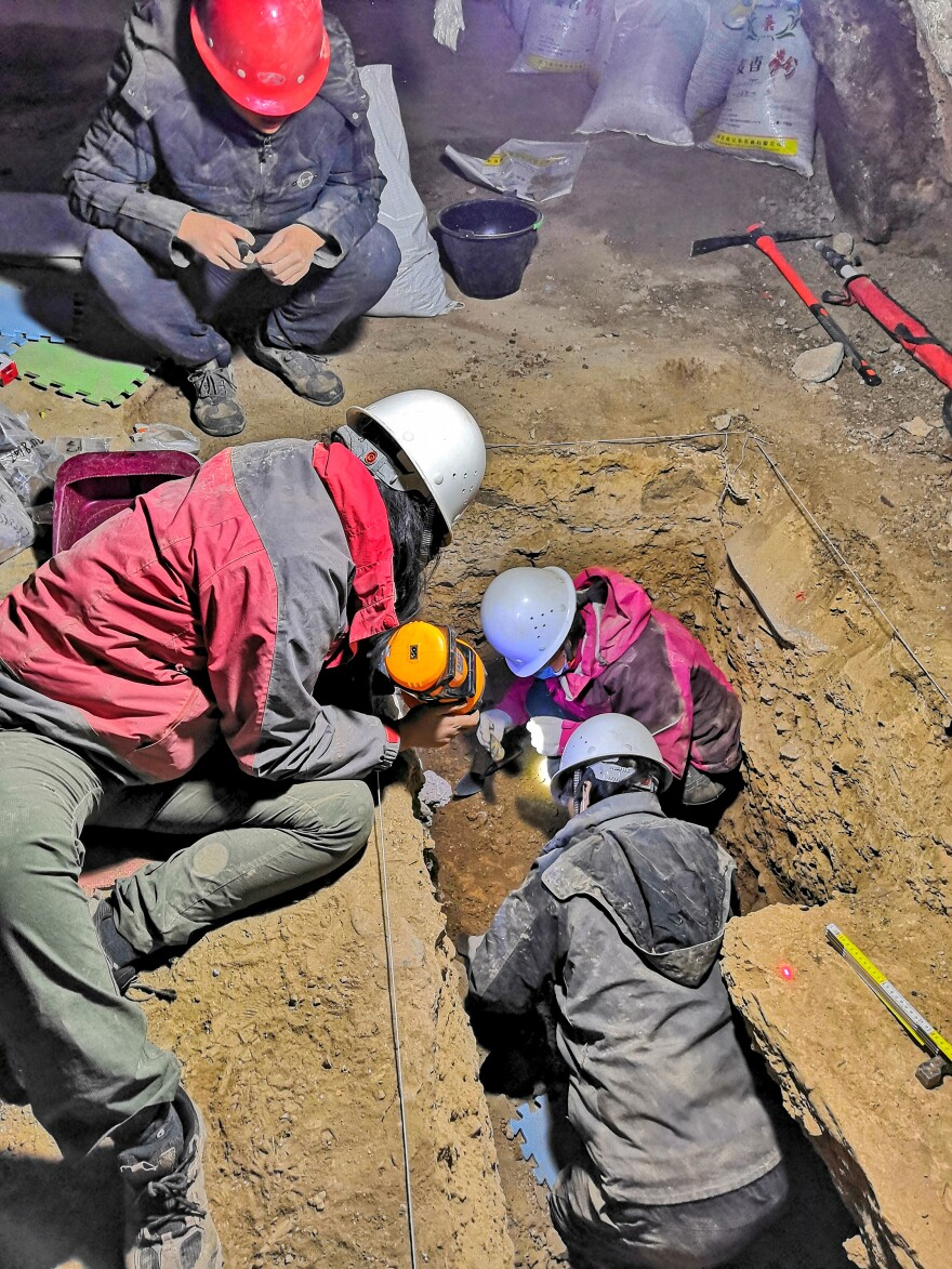 A team led by Dongju Zhang (top right in the trench) excavated trenches in Baishiya Karst Cave in 2018.