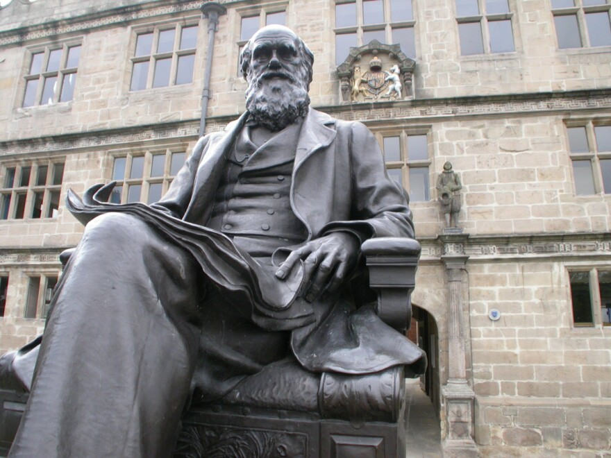 Darwin sits in front of Shrewsbury Library in England, which was formerly a school he attended.