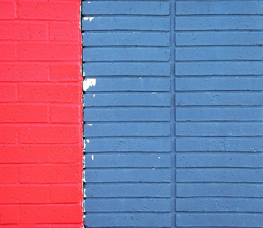 red blue bricks.jpg