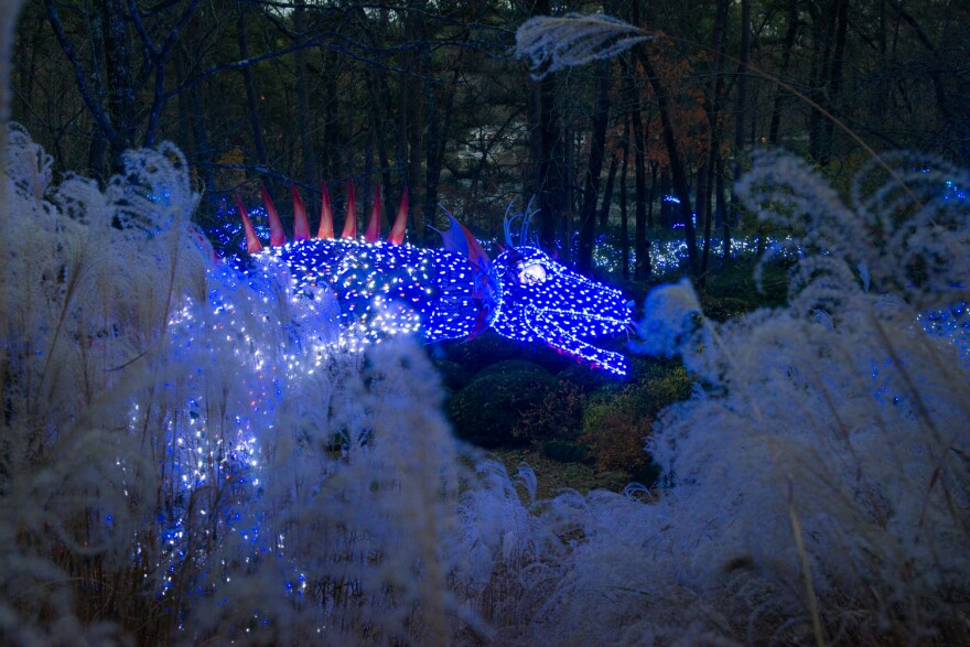 Trail of Lights at Garvan Woodland Gardens in Hot Springs.