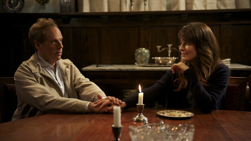 <strong>Reach Out And ... What Was It Again?</strong> Josh Pais and Rosemarie DeWitt are a brother and sister with serious life changes to negotiate in <em>Touchy Feely.</em>