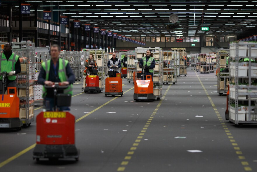 The Netherlands exports more flowers than any other country in the world. Here, employees drive electric carts as they transport cages of flowers at FloraHolland, the largest flower trade center in the world, in Aalsmeer, Netherlands, on March 11, 2014.