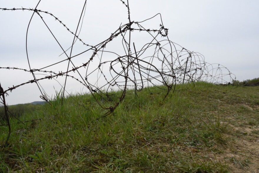 Barbed wire a century old, on the battlefield at Verdun, France