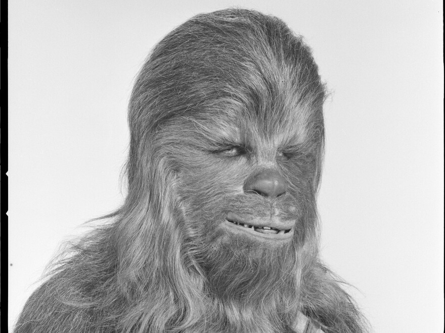 Peter Mayhew, as Chewbacca, <em></em>in 1978.<em></em>