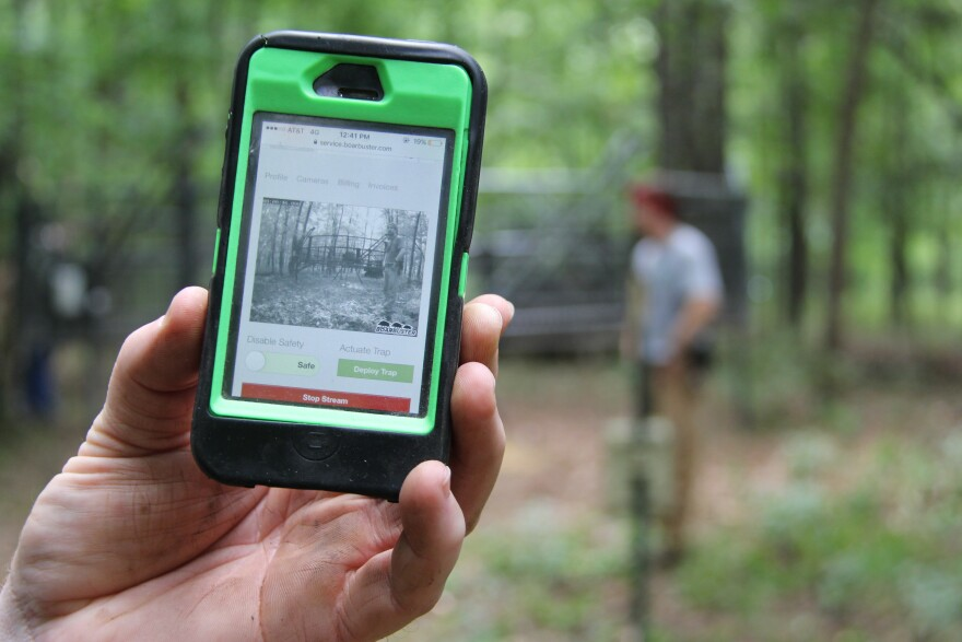 Missouri Department of Conservation official Mark McLain shows how the BoarBuster, a feral hog trap, can be deployed with his phone.