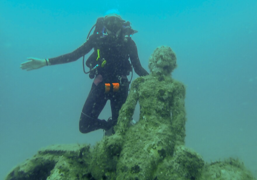 1000 Mermaids Artificial Reef Project