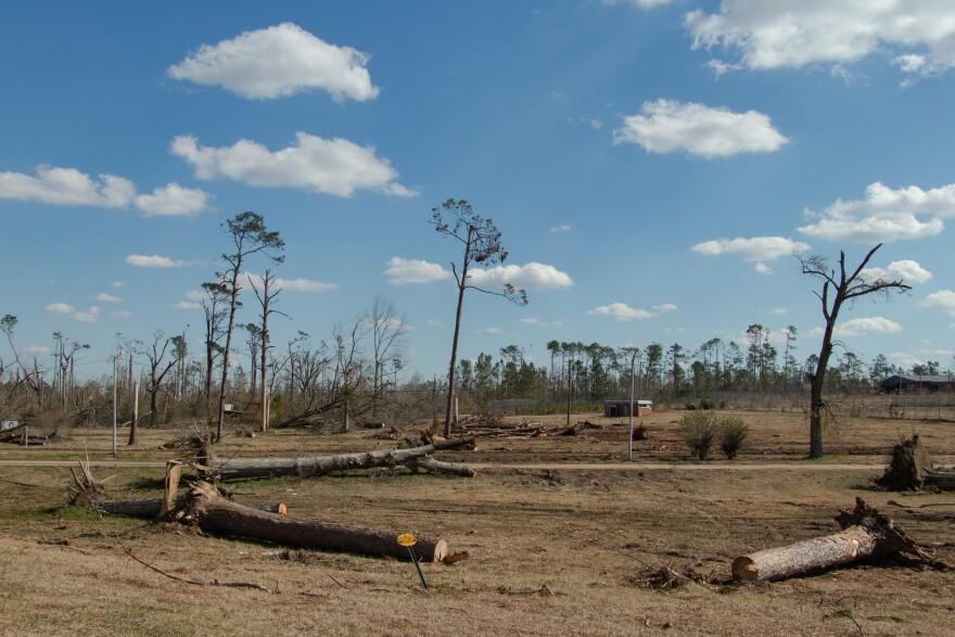 Hurricane Michael Debris marianna