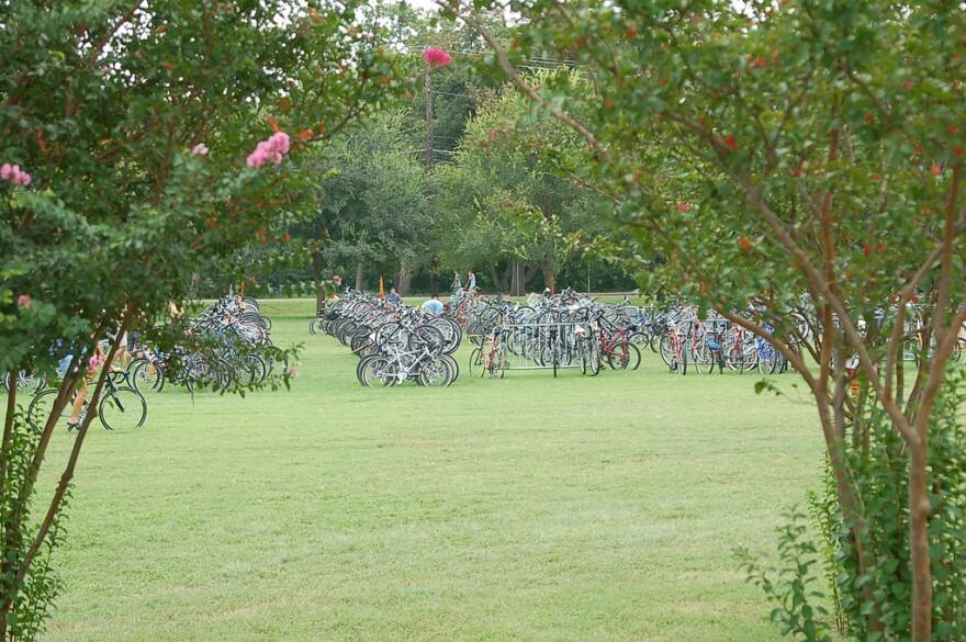 Bikes_at_Zilker_Park.jpg