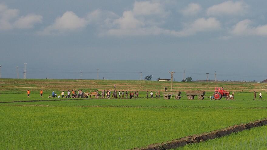 tongbong_cooperative_farm_north_korea.jpg