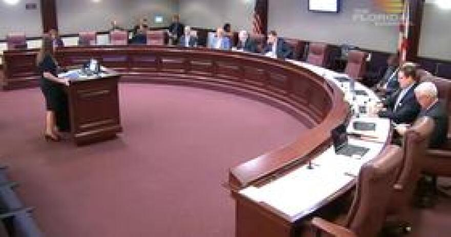 Florida Department of Juvenile Justice Secretary Christy Daly speaking to members of a Senate committee Wednesday.