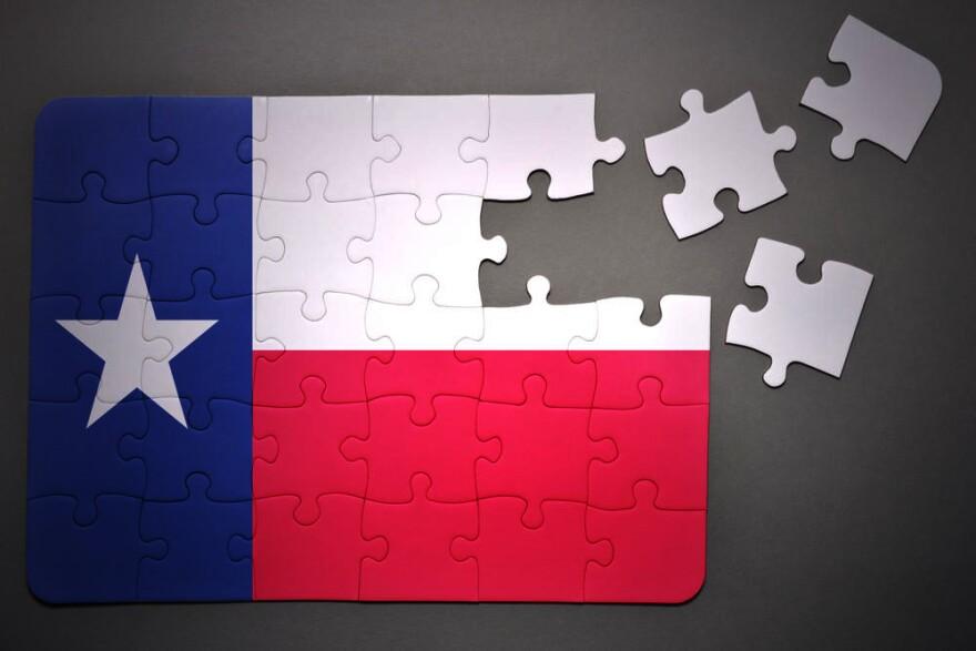 texas_puzzle_copy.jpg