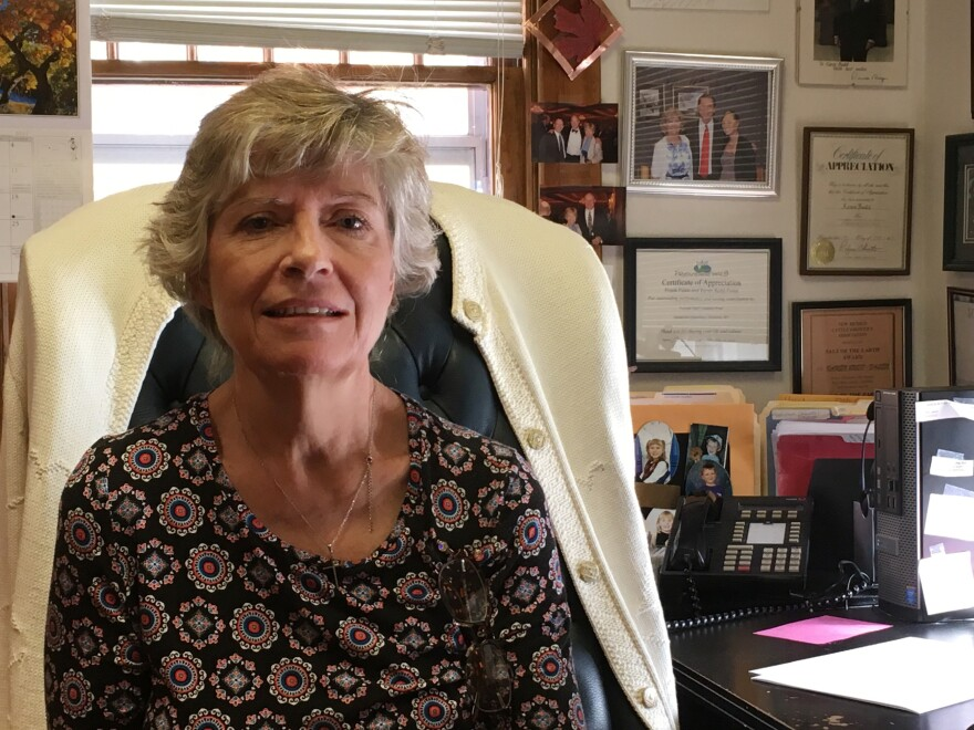 Wyoming attorney Karen Budd-Falen, recently named as Deputy Solicitor for Parks and Wildlife at the Department of the Interior, sits in her law office in Cheyenne, Wyo.