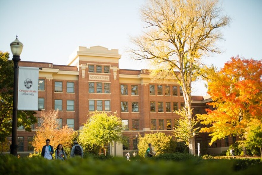 Students walk across Oregon State University's Corvallis campus in this Oct. 27, 2017, file photo.