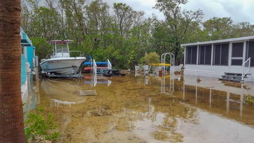 King tide flooding in Key Largo