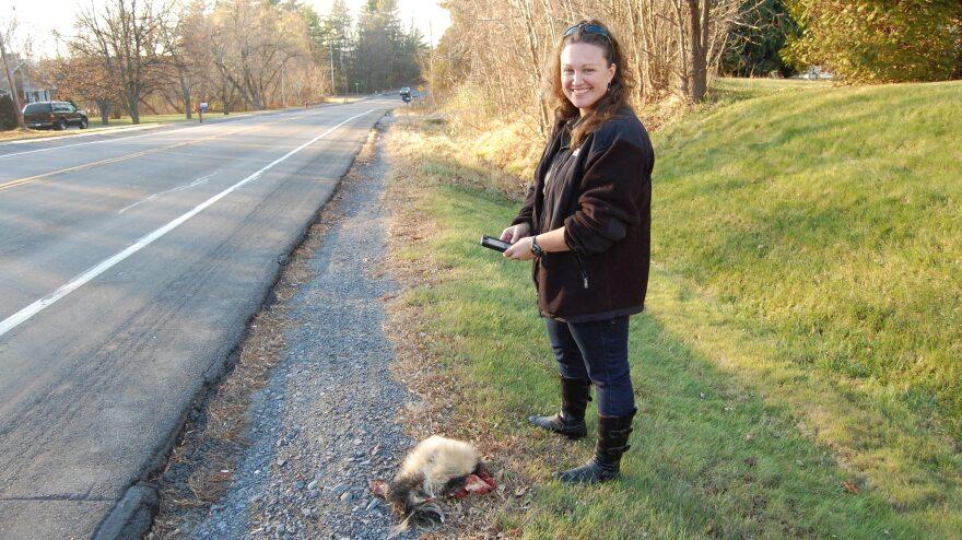 When wildlife ecologist Danielle Garneau finds roadkill, she uploads data about it onto her smartphone.