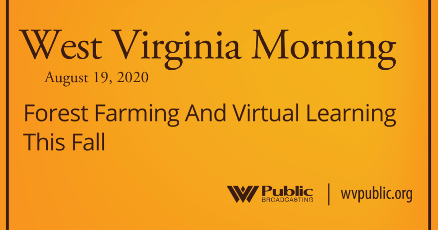081920 Forest Farming And Virtual Learning This Fall