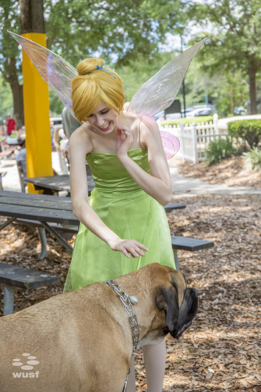 A Tinkerbell cosplayer with the M.U.C.H. Foundation pets a dog at Tampa EcoFest.