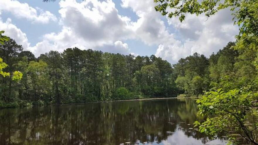 Big Thicket National Preserve has six different water units. Paddling and kayaking are popular activities at the preserve.