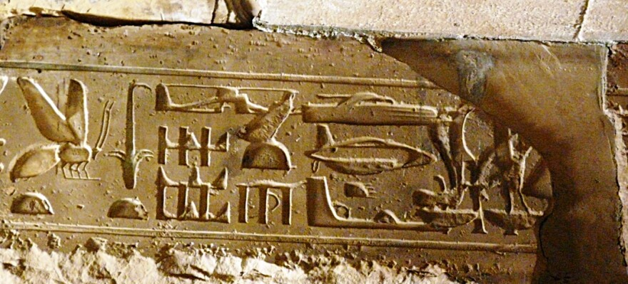 A bee is depicted on an ancient Egyptian hieroglyph.